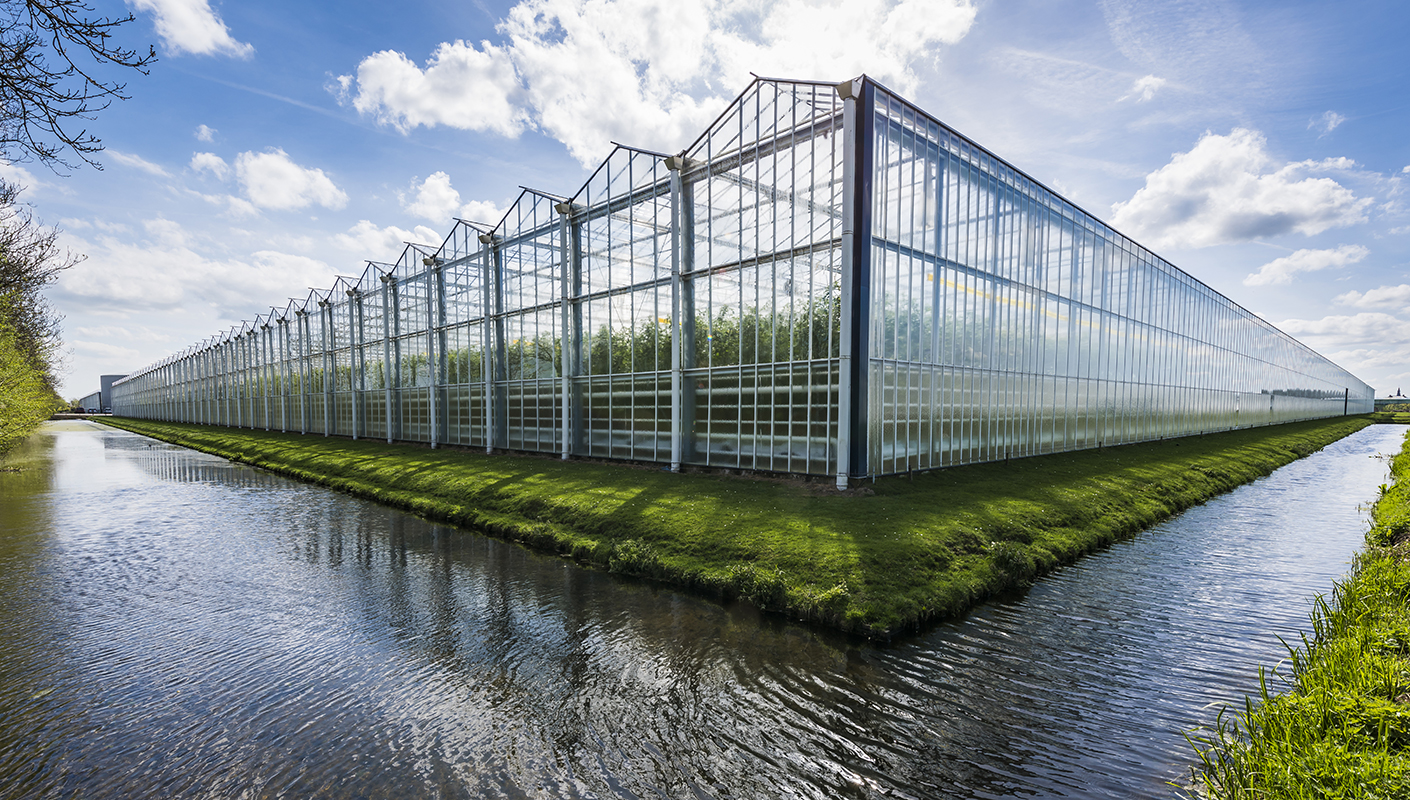 Warehouses in which crops will be grown